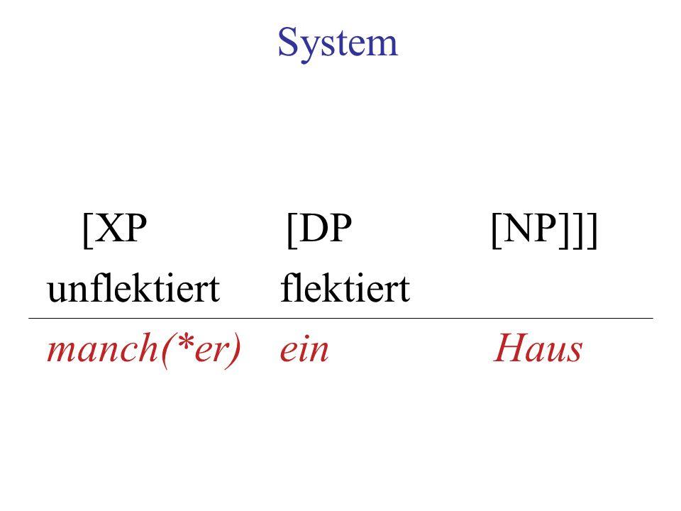 System [XP [DP [NP]]] unflektiert flektiert manch(*er) ein Haus